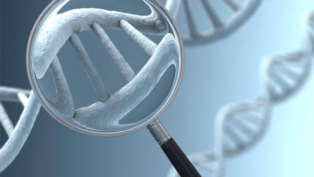 dr_polgar_zoltan_genetikai_tanacsadas-2